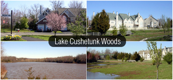 Lake Cushetunk is located just a few miles from the Whitehouse Station NJ Transit train stop